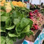 Bainbridge Farmers Market