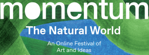 Eco-printing: Prints & Patterns with Catherine Alice Michaelis (Online)